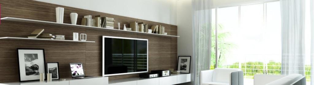Flatscreen TV Installers